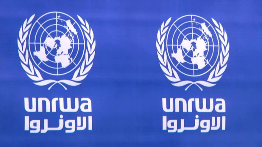 21 ONG piden a EEUU reconsiderar recorte de fondos para la UNRWA