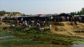 ONU advierte de 'crímenes internacionales' contra los rohingyas