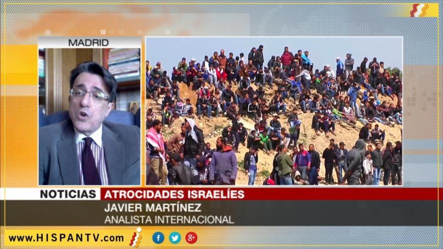 'Apoyo incondicional de EEUU a Israel causa masacre de palestinos'
