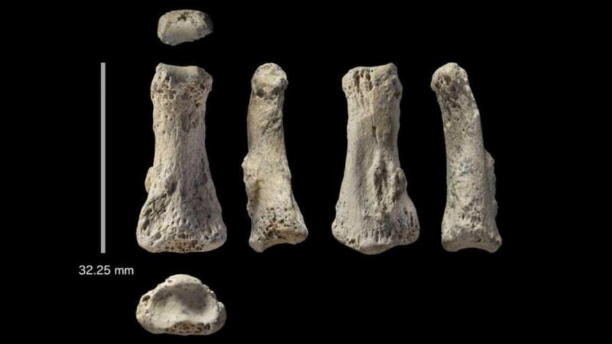 Un dedo de 85.000 años cuestiona teorías sobre historia humana | HISPANTV