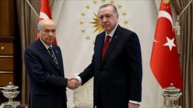 Erdogan anuncia elecciones anticipadas en Turquía para junio