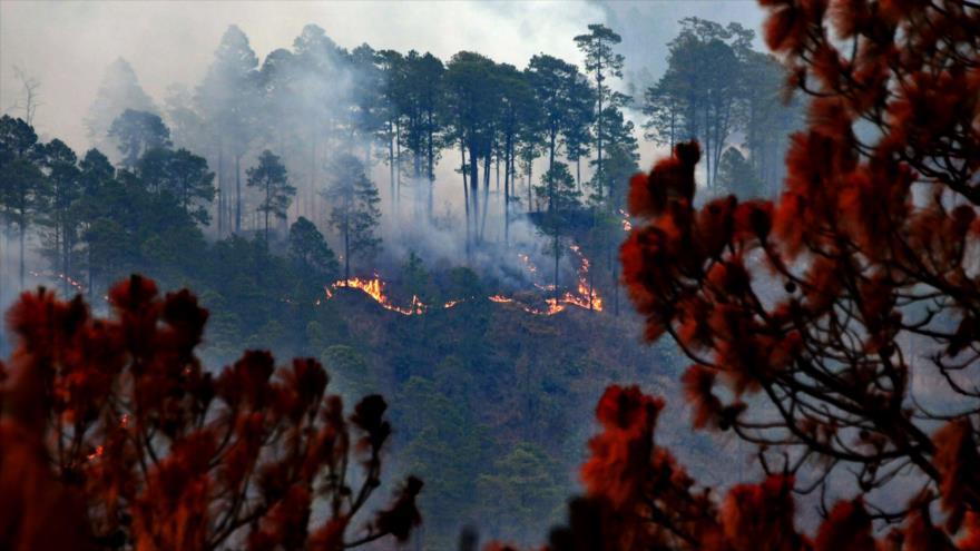 Mueren dos de los cinco bomberos hondureños quemados sofocando incendio forestal