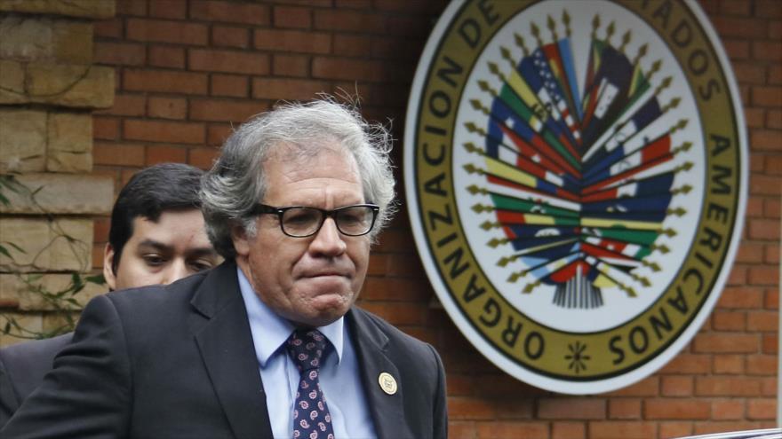 El secretario general de la Organización de Estados Americanos (OEA), Luis Almagro.