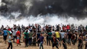 HAMAS convoca una gran marcha por aniversario del Día de la Nakba