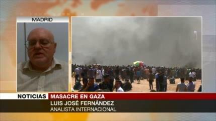 Luis José Fernández: EEUU e Israel, culpables de masacre en Gaza