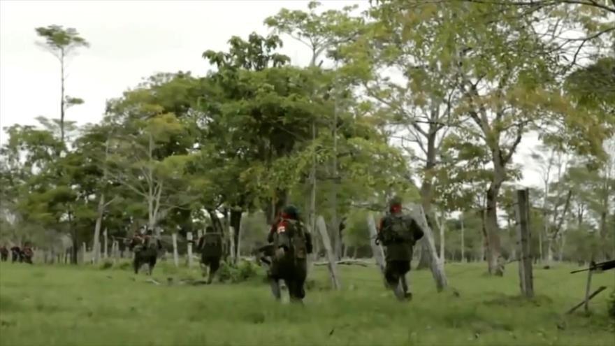 Ejército de Liberación Nacional decreta cese unilateral al fuego