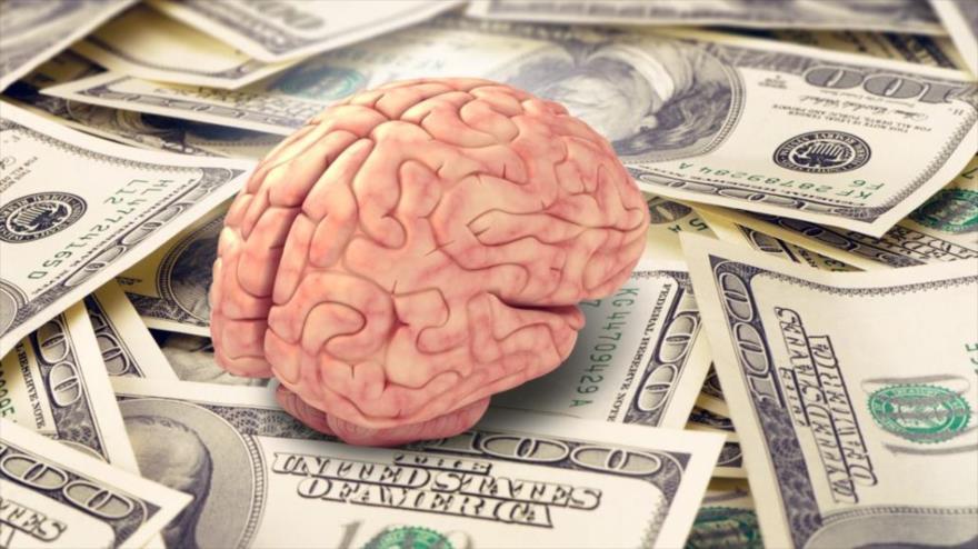 Estudio: nivel de ingresos afecta función y anatomía del cerebro ...