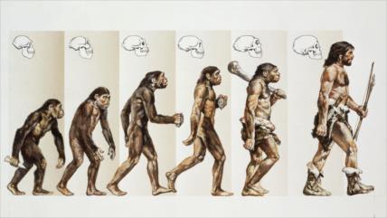 Estudio genético a gran escala pone en cuestión teoría de Darwin