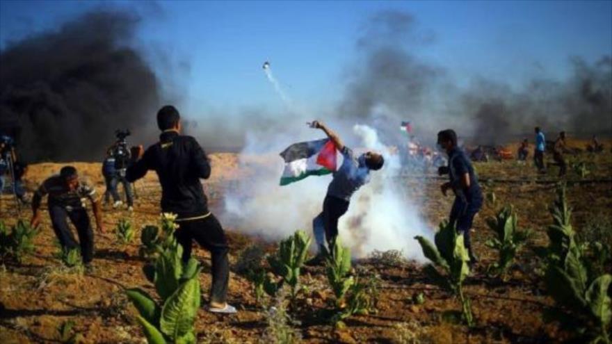 Palestinos marcharán en Gaza vestidos de víctimas de campos nazis