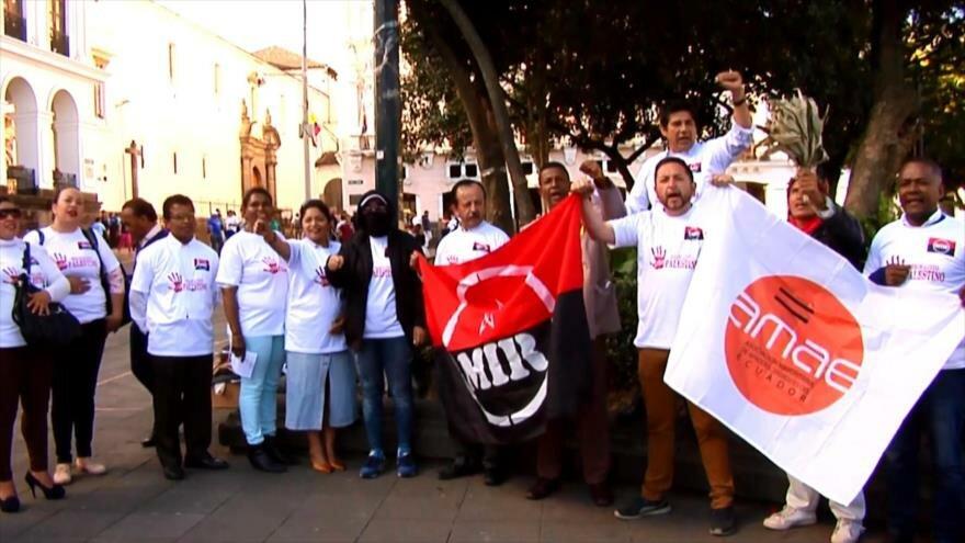 Se manifiestan por Palestina en la Plaza de la Independencia de Ecuador
