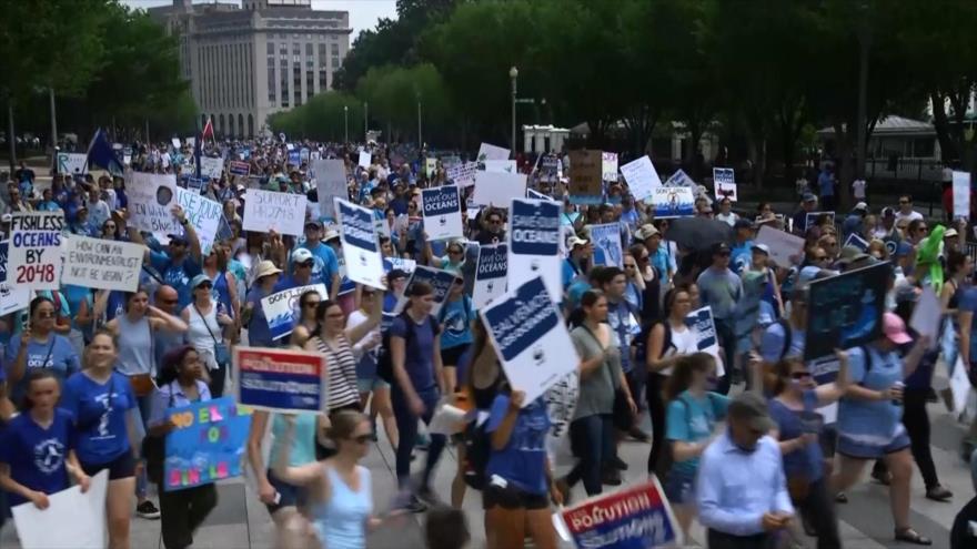 Marchan contra la contaminación de los océanos | HISPANTV