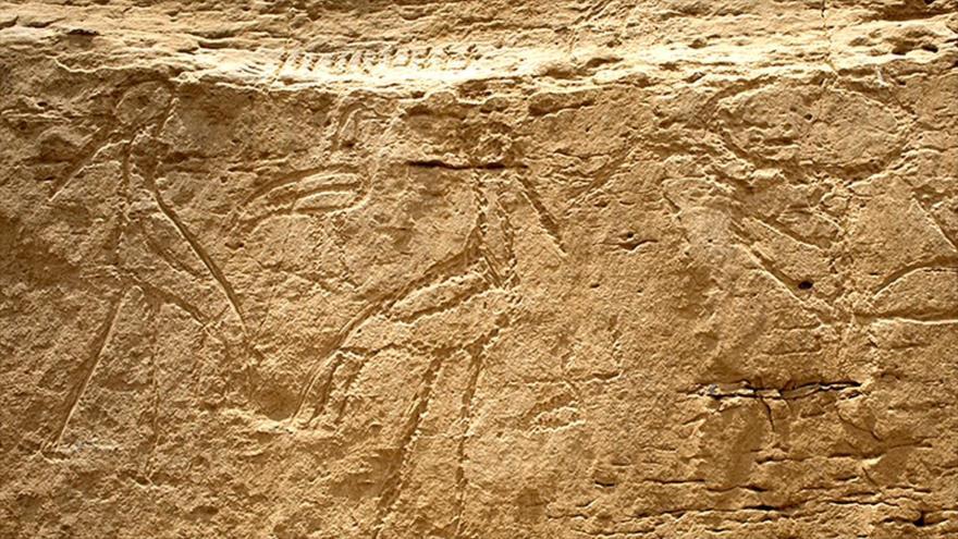 Algunas de las pinturas rupestres descubiertas en el sur de Egipto.
