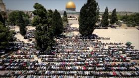 Irán Hoy: La solución de Irán para la crisis palestina