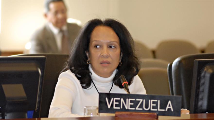 La representante interina de Venezuela en el Consejo Permanente de la Organización de los Estados Americanos (OEA), Carmen Luisa Velázquez.