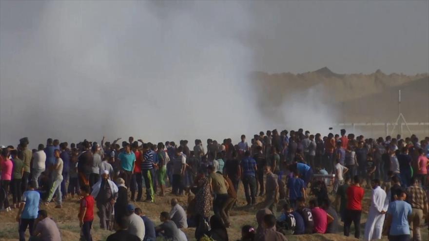 Palestinos no se rendirán hasta liberación total de su territorio