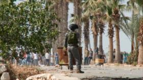Histórica declaración en Chile de ciudad libre del apartheid israelí