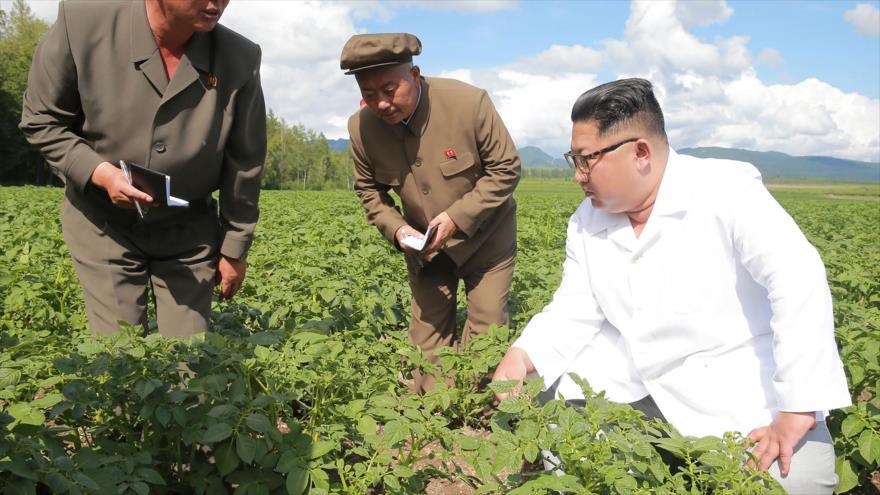 Kim desaíra a Pompeo y prefiere visitar un campo de patatas | HISPANTV