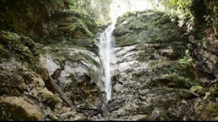Costa Rica aprueba consumir agua de zonas protegidas