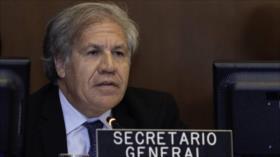 Almagro insiste en su idea de adelantar los comicios en Nicaragua