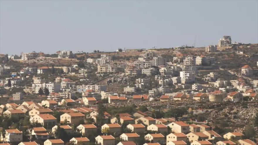 ONG: Israel concesiona 99,7 % de tierras en Cisjordania a colonos