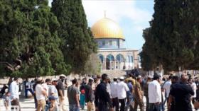 Vídeo: Centenares de colonos israelíes irrumpen en Al-Aqsa