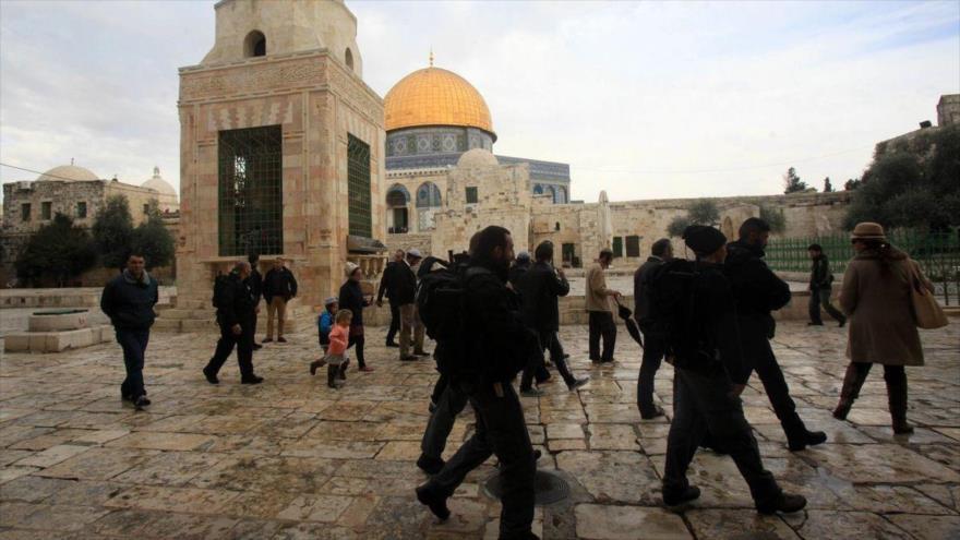 3900 colonos israelíes irrumpieron en Mezquita Al-Aqsa en julio
