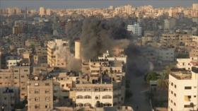 Atrocidades saudíes. Tregua Israel-HAMAS. Tensión Rusia-EEUU
