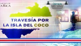 Cámara al Hombro: Exposición nos lleva a una travesía por la isla del Coco en Costa Rica