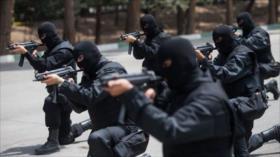 Fuerzas iraníes abaten a 11 terroristas en la frontera con Irak