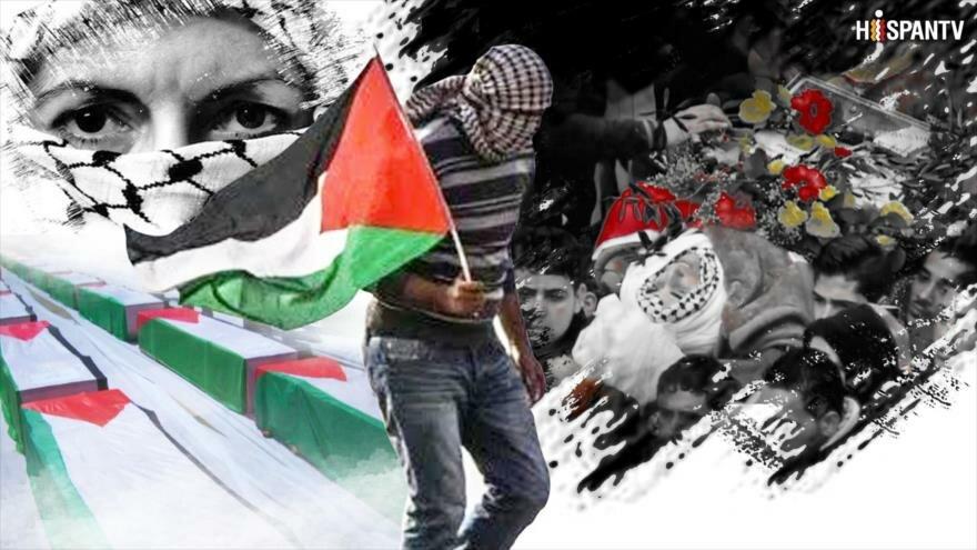 La Vida Bajo el Apartheid: Los cadáveres de los mártires palestinos en cementerios de números de Israel