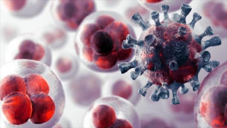 Hallan una terapia para tratar cánceres incurables con un farmaco | HISPANTV