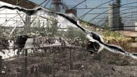 La Vida Bajo el Apartheid: El impacto de las fábricas israelíes en los territorios palestinos