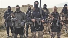 'Ningún país puede considerarse impune al terrorismo'