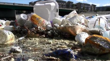 Contaminación marítima: grave problema mundial