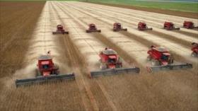 China logra sustituir a EEUU por Brasil en suministro de soja