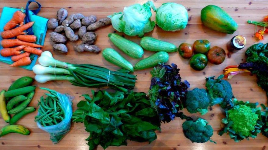 Algunos alimentos saludables que aportan las necesidades nutricionales de cada individuo.
