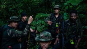 Cerca del 40 % de las FARC se ha rearmado, según informe
