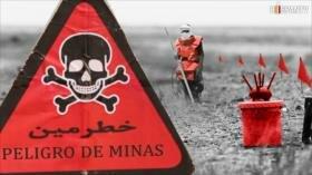 Tierra libre de minas