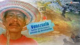 Esta es mi tierra - Venezuela, luchas territoriales y proceso de demarcación