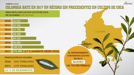 Colombia bate en 2017 un récord sin precedentes en cultivo de coca