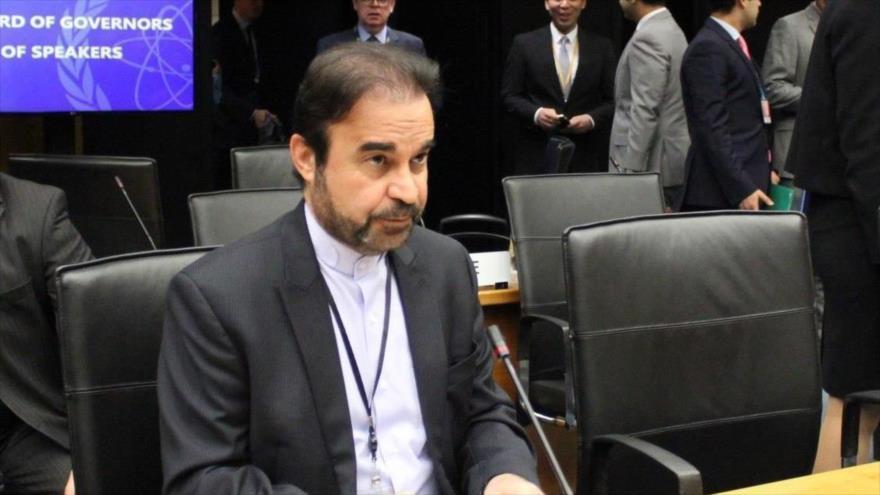 El director general para Asuntos de Paz y Seguridad Internacional de la Cancillería iraní, Reza Nayafi.
