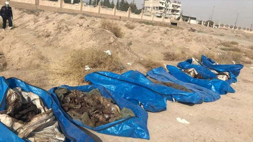 Vídeo: Hallan una fosa común en Al-Raqa con restos de 1500 civiles