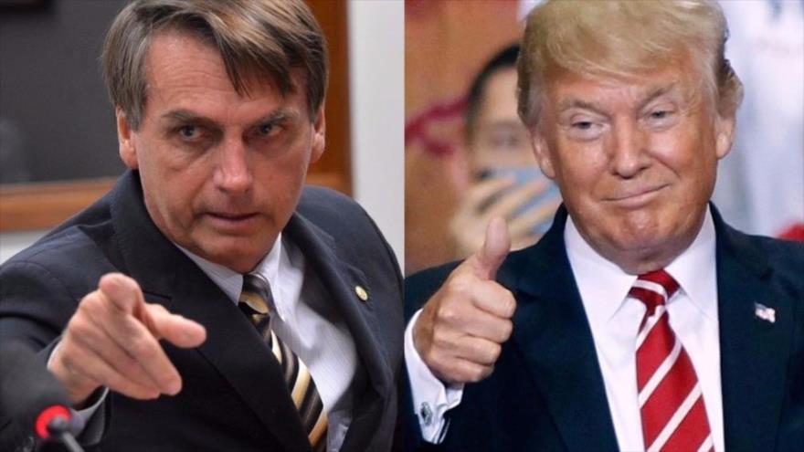 Conozca las diferencias y semejanzas entre Trump y Bolsonaro