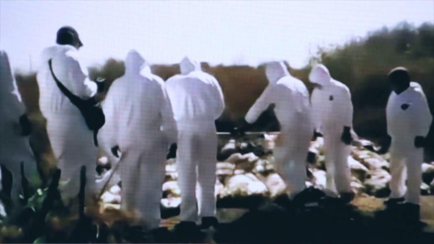 Desde México: Fosas clandestinas, las facturas del crimen organizado