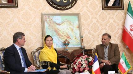 Senador galo: UE se esfuerza para sortear sanciones de EEUU a Irán