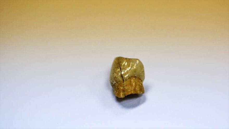 Hallado un diente de neandertal en excavaciones en oeste de Irán | HISPANTV