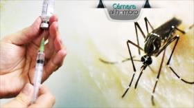 Cámara al Hombro: Chiapas, Dengue un problema de salud pública