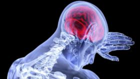 Científicos descubren cómo 'se ve' la tristeza en el cerebro