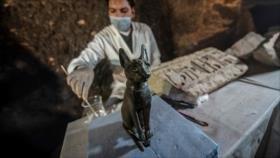Descubren en Egipto decenas de momias de animales y estatuas