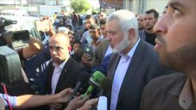 Tregua en Gaza. Represión contra rohingyas. Tensión Francia-EEUU